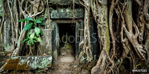 Bild på Ancient stone door and tree roots, Ta Prohm temple