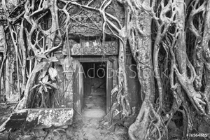 Bild på Ancient stone door and tree roots, Angkor temple