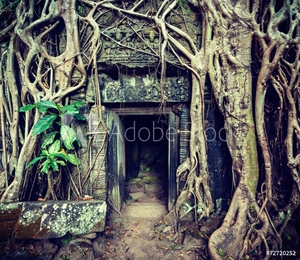 Bild på Ancient stone door and tree roots, Ta Prohm temple, Angkor