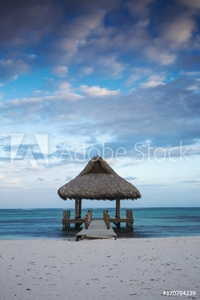 Bild på Dominican Republic, Punta Cana, Playa Blanca, Wooden pier with thatched hut