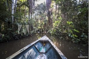 Bild på Canoe boat trip in Amazon Jungle of Peru, by Sandoval Lake in Tambopata National Reserve, Peru, South America