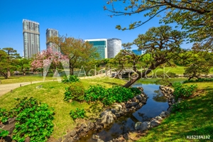 Bild på Hamarikyu Gardens, Tokyo, Sumida River, Chuo district, Japan. Oriental japanese garden during Hanami. The Hama Rikyu is in contrast to the skyscrapers of the adjacent Shiodome district.