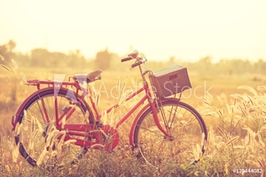 Bild på beautiful landscape image with Bicycle at summer grass field.classic bicycle,old bicycle style for greeting Cards ,post card