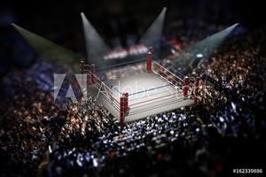 Bild på Empty boxing ring surrounded with spectators. 3D illustration