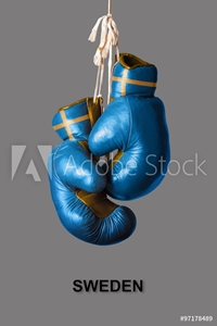 Bild på Boxing Gloves in the Color of Sweden
