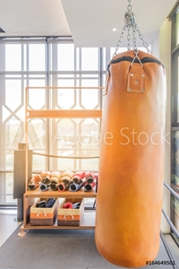 Bild på Boxing sand bags hanging at a sports gym.