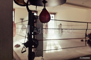 Bild på Empty boxing ring with speed bag in foreground