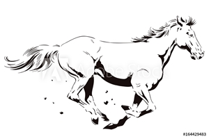 Bild på A galloping horse. Stock illustration.