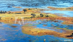 Bild på Okavango delta (Okavango Grassland) is one of the Seven Natural Wonders of Africa (view from the airplane) - Botswana, South-Western Africa