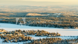 Bild på Frozen lake and spruce forest in winter. Finland, Ruka