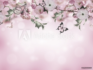 Bild på Flowers background with amazing spring sakura with butterflies. Flowers of cherries.
